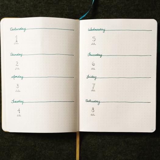 my 8 day week